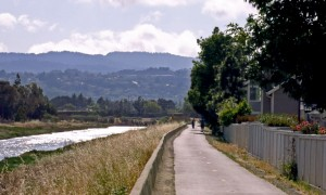 Trail from Port Royal Park to O'Neal Slough in Foster City